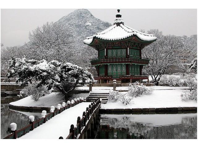 เกาหลีท้าล้มหนาว